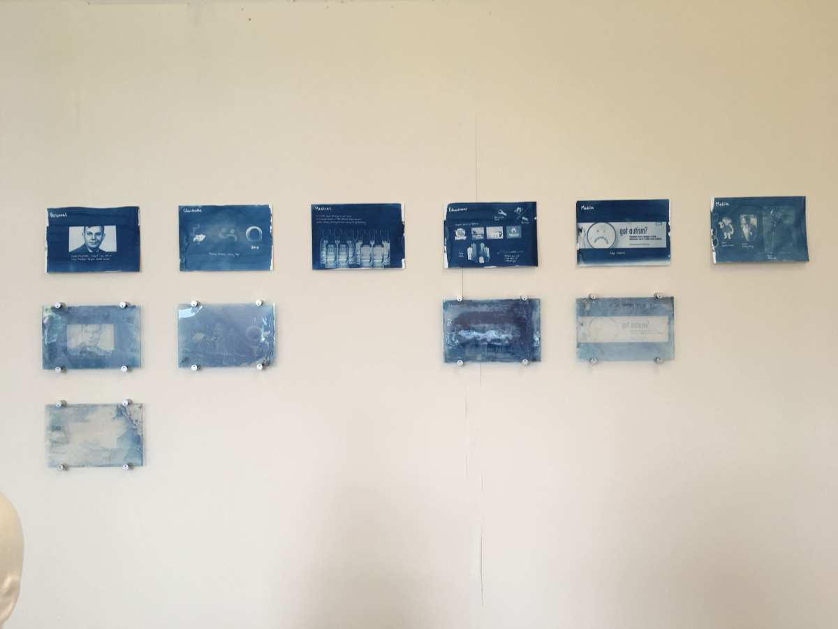 Cyanotypes on paper and glass