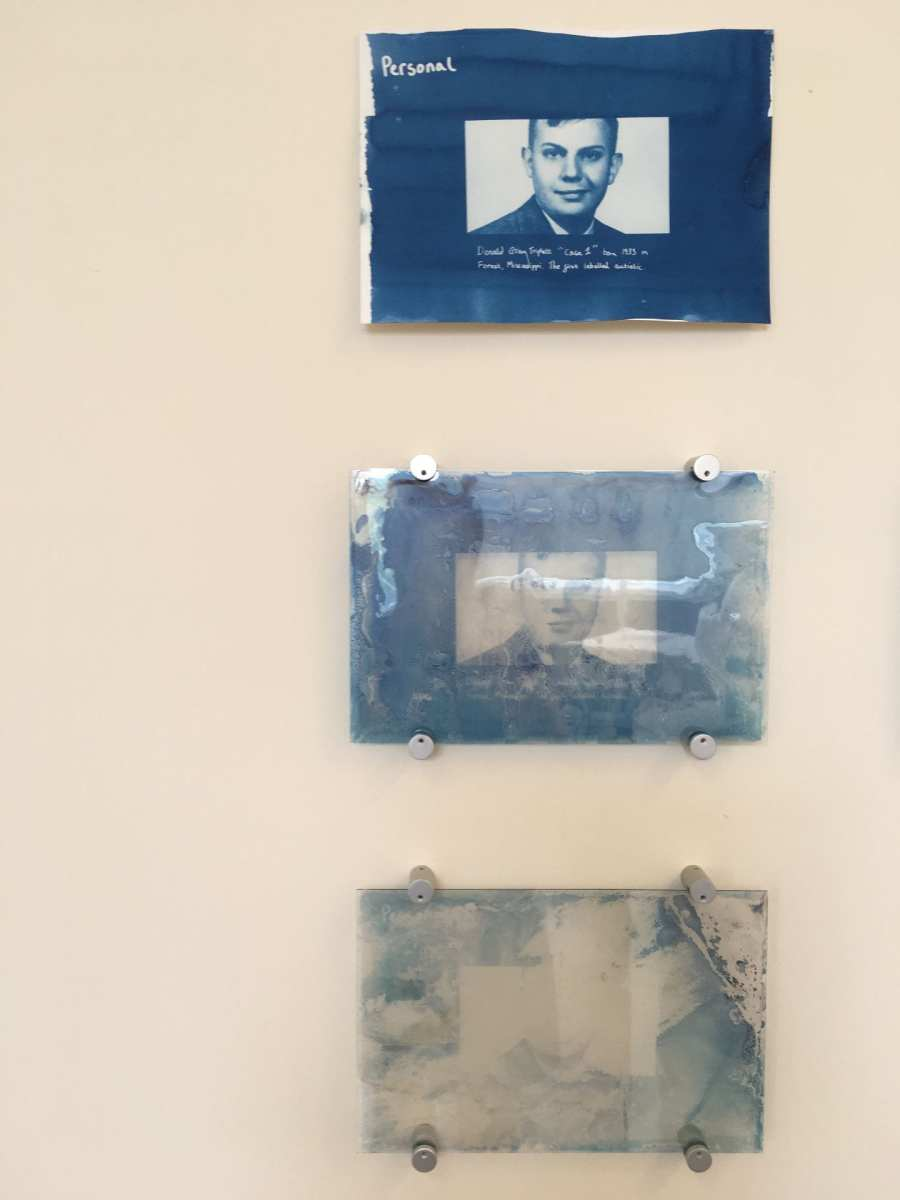 Photograph of all 3 personal cyanotypes on paper and glass